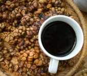 Where to buy weasel coffee in Ho Chi Minh City Coffee Cup with Beans