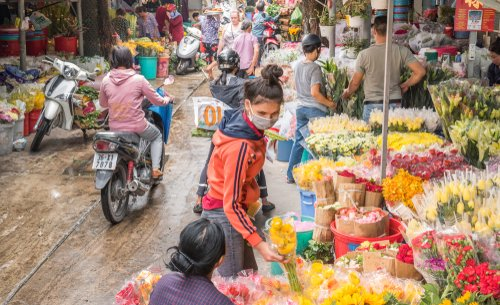 The largest wholesale flower supplier in Ho Chi Minh City